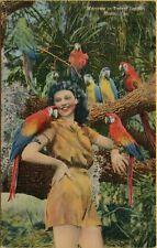 Macaws on Beautiful Girl in Parrot Jungle Miami Florida FL Postcard B7