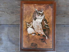 Owl Picture VINTAGE Screech Owls  Picture Wood Signed Richard Has tears etc