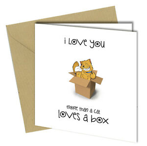 #726 Love You More Than Cats Love A Box Birthday Valentines Greetings Card