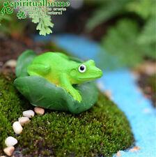 Frogs Micro Landscape Creative Resin Handcraft Fairy Garden Grass Lawn Ornament