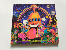 Raja Ram ?? Spaceships Of The Imagination - CD TIP Chillout Ambient Goa Trance