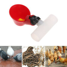 Poultry Water Drinking Cup Plastic Automatically Drinker Chicken Hen Bird Feeder