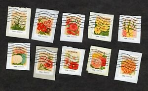 #4754-63 Vintage Flower Seed Packets, Used Set of 10, Forever (49 cent) On Paper