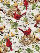 3 Yards Quilt Cotton Fabric - Timeless Treasures Cardinals Birds Nests Birch