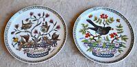 HUTSCHENREUTHER Collector Bird Plates - set of 2 - Jan/Wren and Sept/Blackbird