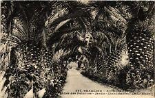 CPA  Beaulieu - Environs de Nice -Allée des Palmiers -Jardin  ...   (514218)