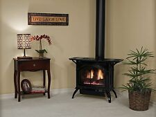 Empire Direct Vent Gas Cast Iron Stove Matte Black Medium Free Standing Stove