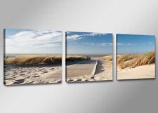 Bilder 3 Teile Visario 150x50cm Dünen Gras Bild 4221 / Marke sofort Versand