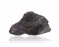 Trozo de meteorito