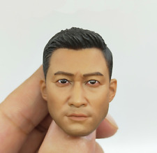 1/6 Scale Soldiers Model China PLA Sino-Vietnames War Head Carving Head Sculpt