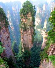 AVATAR ORIGINAL LANDSCAPE SCENE AT TIANZI MOUNTAINS IN ZHANGJIAJIE FOREST-CHINA