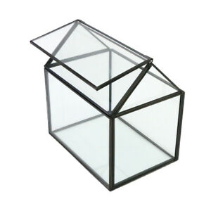 Glass Terrarium Container Geometric Succulent Planter Black Pentagon Metal A++++