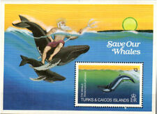 Turks & Caicos Stamp - Save our Whales Stamp - NH