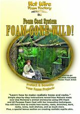 Foam Gone Wild DVD - How To Protect and Beautify Your Foam Projects