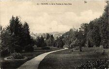 CPA  Bayon - vu de la Prairie du Petit Bois  (483739)