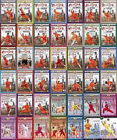 45DVDs Real Chinese Traditional Shao Lin Kung Fu by Shi Deci Complete Series