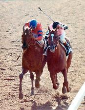 1 1/2 HOUR  DVD  ALL 10  AFFIRMED vs. ALYDAR races 1978 KENTUCKY DERBY TC & MORE