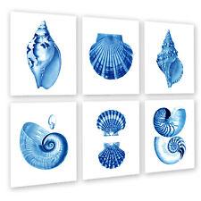 Blue Sea Shell Prints set of 6 Unframed Coastal Art Decor Beach Decor
