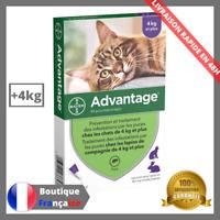 Advantage Antiparasitaire Pour Chat Lapin Plus de 4KG Anti Puces 4 Pipettes 40