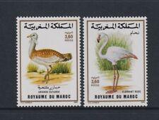 Morocco - 1988, Birds set - MNH - SG 754/5