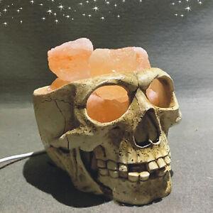 Unique Skull Lamp Bedroom Bedside Himalayan Slat Nightlight Dimmable Lights