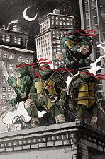 Les tortues ninja tmnt poster print A4 260GSM