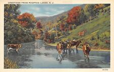 Pompton Lakes New Jersey 1940s Greetings Postcard Cattle Cows
