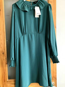 Ladies BNWT Next Teal Dress With Collar. Size 16 RRP £42