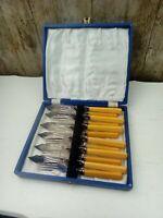 EPNS R & D 12pc Fork & Knife Set Orange ish Handles Blue Display Box