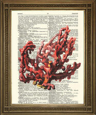 RED CORAL DICTIONARY PRINT: Reef Art Illustration on Vintage Paper