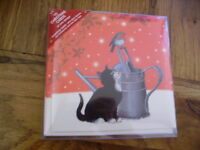 Festive Garden Black Cat and Robin 10 pack small square Christmas cards