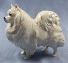 rare spitz porcelain Rosenthal Diller dog figurine porcelainfigurine  1957