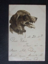 Dog Posted Collectable Animal Postcards