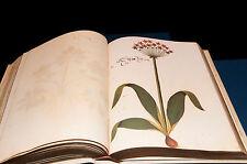 Atlas de historia Natural de Felipe II o códice Pomar - Vicente García Editores