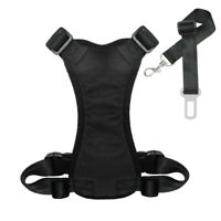 Soft Dog Car Harness & Seat Belt Clip Leash Safety for Small Large Dogs Travel