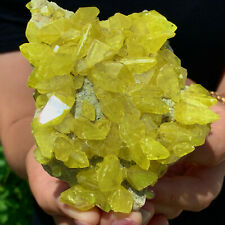 355G  Minerals ** LARGE NATIVE SULPHUR OnMATRIX Sicily- FREE TC448
