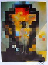 Salvador Dali Lincoln DALIVISION Limited Edition Facsimile Signed Lithograph Art