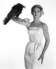 "TIPPI HEDREN IN ALFRED HITCHCOCK'S ""THE BIRDS"" - 8X10 PUBLICITY PHOTO (NN-120)"