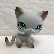Littlest Pet Shop LPS Figure Toy #391 Green Eye Egyptian Short Hair Cat Rare P1
