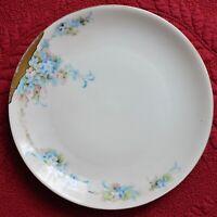 "HR Hutschenreuther Selb Plate Bavaria SAS Porcelain Plate Blue Floral Flowers 7"""