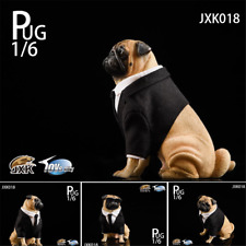 JxK 1/6 Suit Pug Figure Dog Pet Animal Model Collector Decoration Toy GK Gift