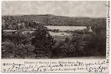 1907 Bird's Eye View Glimpse of Harvey's Lake Near Wilkes-Barre PA UDB Postcard