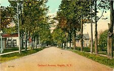 A Panoramic View, Looking Down Orchard Avenue, Angola Ny