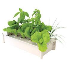 Hydrofarm Salad Box Hydroponic Soil-Free Salad Greens Garden Growing Kit | GCSB