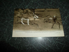 """Vintage Postcard """"If I had a Donkey And He Wouldn't Go."""" Franked+Stamped 1904"""