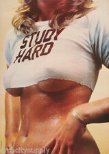 2 DIFFERENT - POSTERS : STUDY HARD - SEXY MODELS  #X 01 LP45 N & #3177  LP33 X