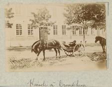 Norvège, trondheim, attelage à cheval, carriole  vintage albumen print,Photos