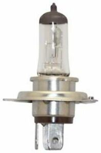 REPLACEMENT BULB FOR NARVA 48901 100W 12V