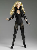 TONNER DC STARS COLLECTION BLACK CANARY 13 INCH COLLECTOR DOLL VERY RARE & VHTF