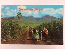 Sugar Cane Fields in Hawaii HI Chrome Postcard Unused